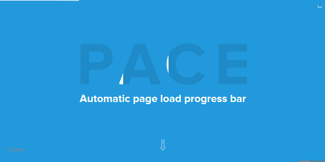 Pace - Automatic page load progress bar