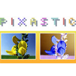Pixastic - Image Processing Library