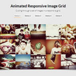 Animated Responsive Image Grid