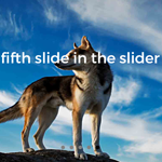 ajSlider - Image and Content jQuery Plugin