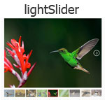 lightSlider -  A lightweight touchable responsive Content slider
