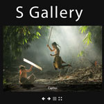 S Gallery - A Responsive jQuery Gallery