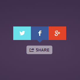 Share Button – Fast and Beautiful Social Share Buttons